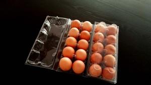 cofraje din plastic pentru oua gaina