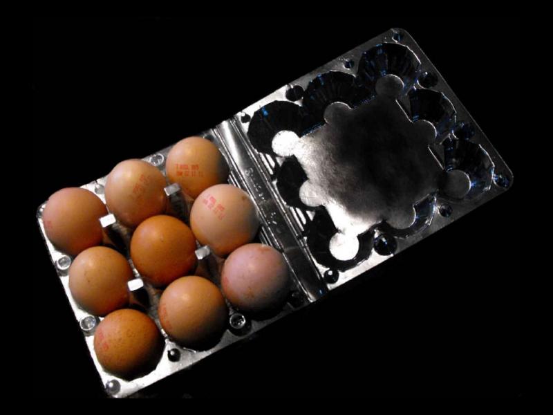 Cofraje oua gaina cu 9 compartimente